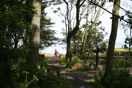 Into Cambo Woods with views of the Golfers at Kingsbarns Links