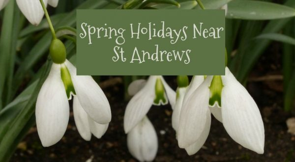 spring holidays near st andrews