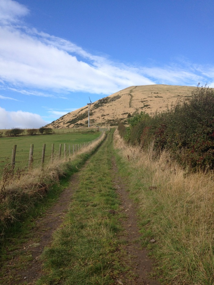 path to largo law