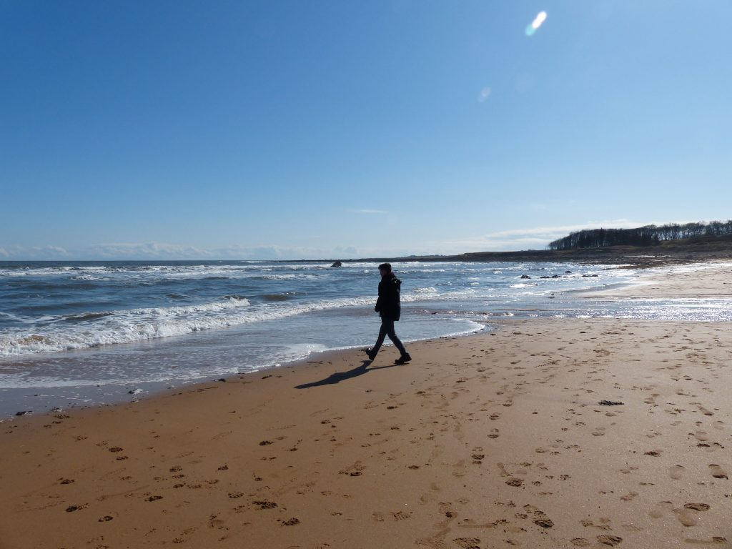 Day out to Cambo Sands Kingsbarns