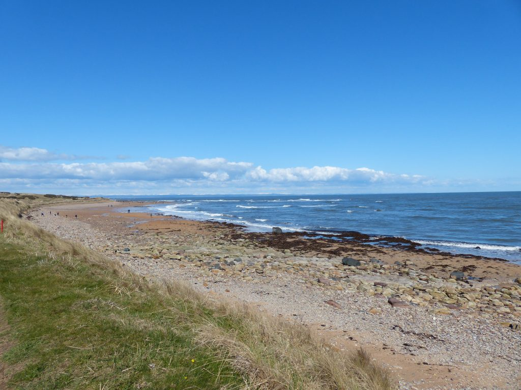 Day out to Cambo Sands Beach Kingsbarns