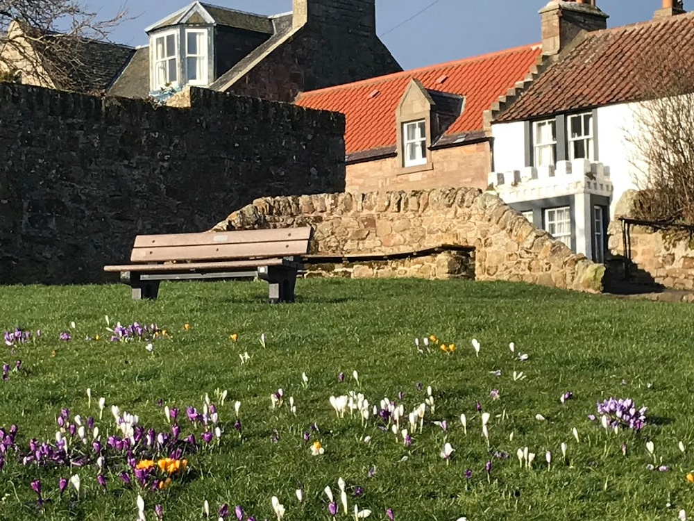 A Spring Break in Crail