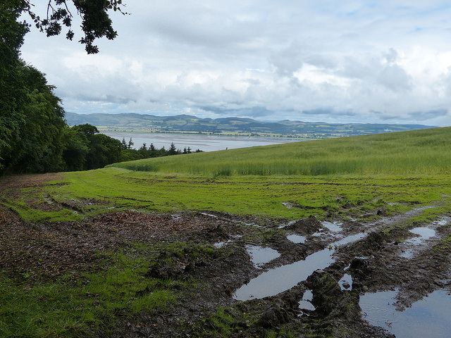 Fife Coastal Path Newport to Newburgh