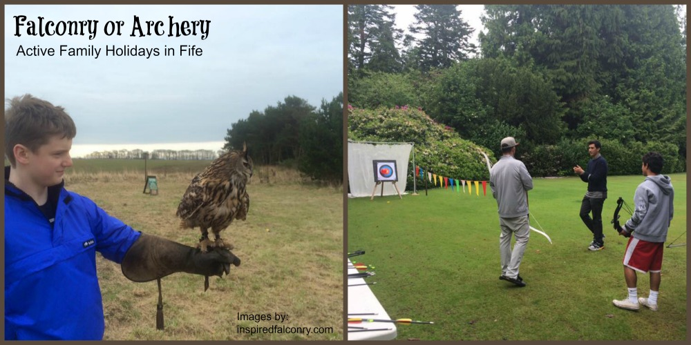 falconry and archery crail