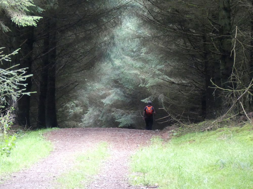 Pilgrim Way