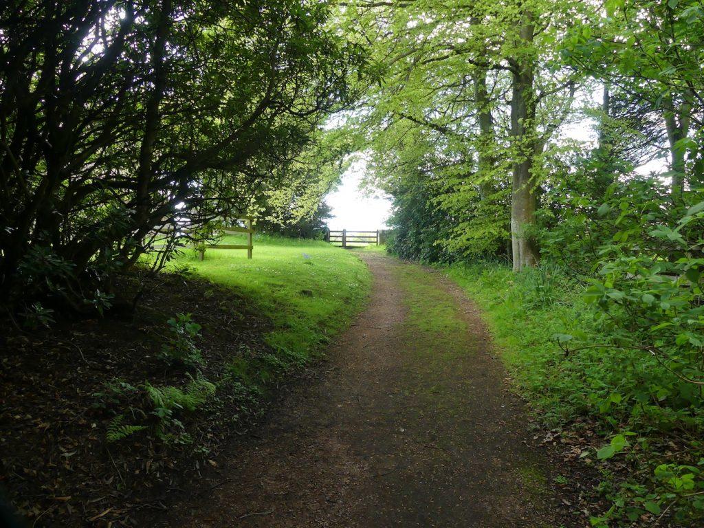 Path to Abercrombie Kirk