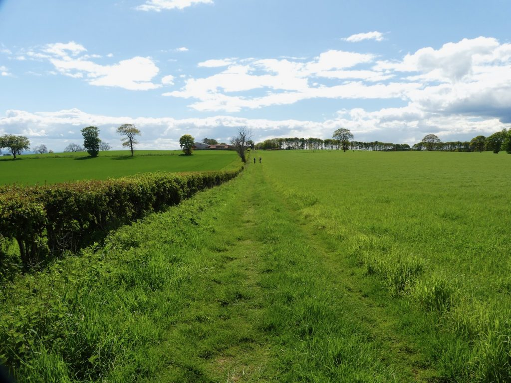 Path from Abercrombie Kirk to Abercrombie Village