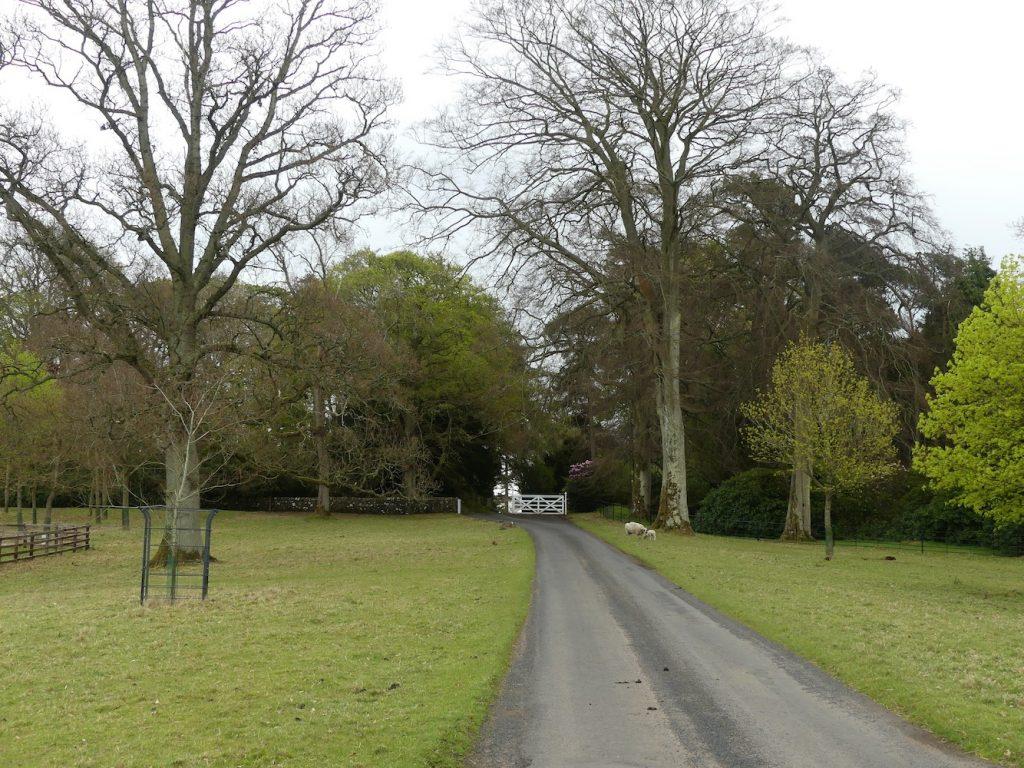 Walk toward the white gate